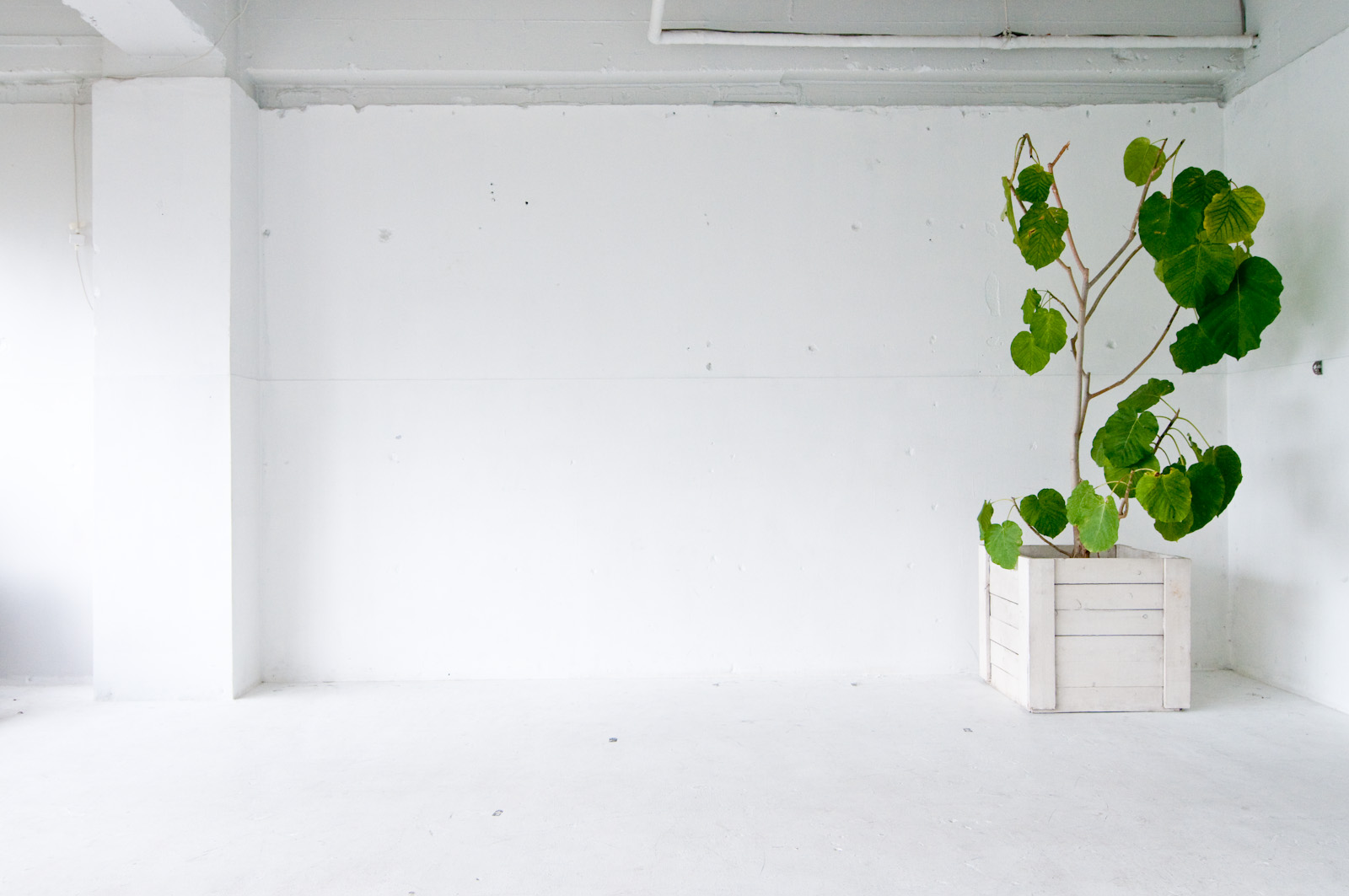 【人気】リノベーションに適した中古住宅の選び方